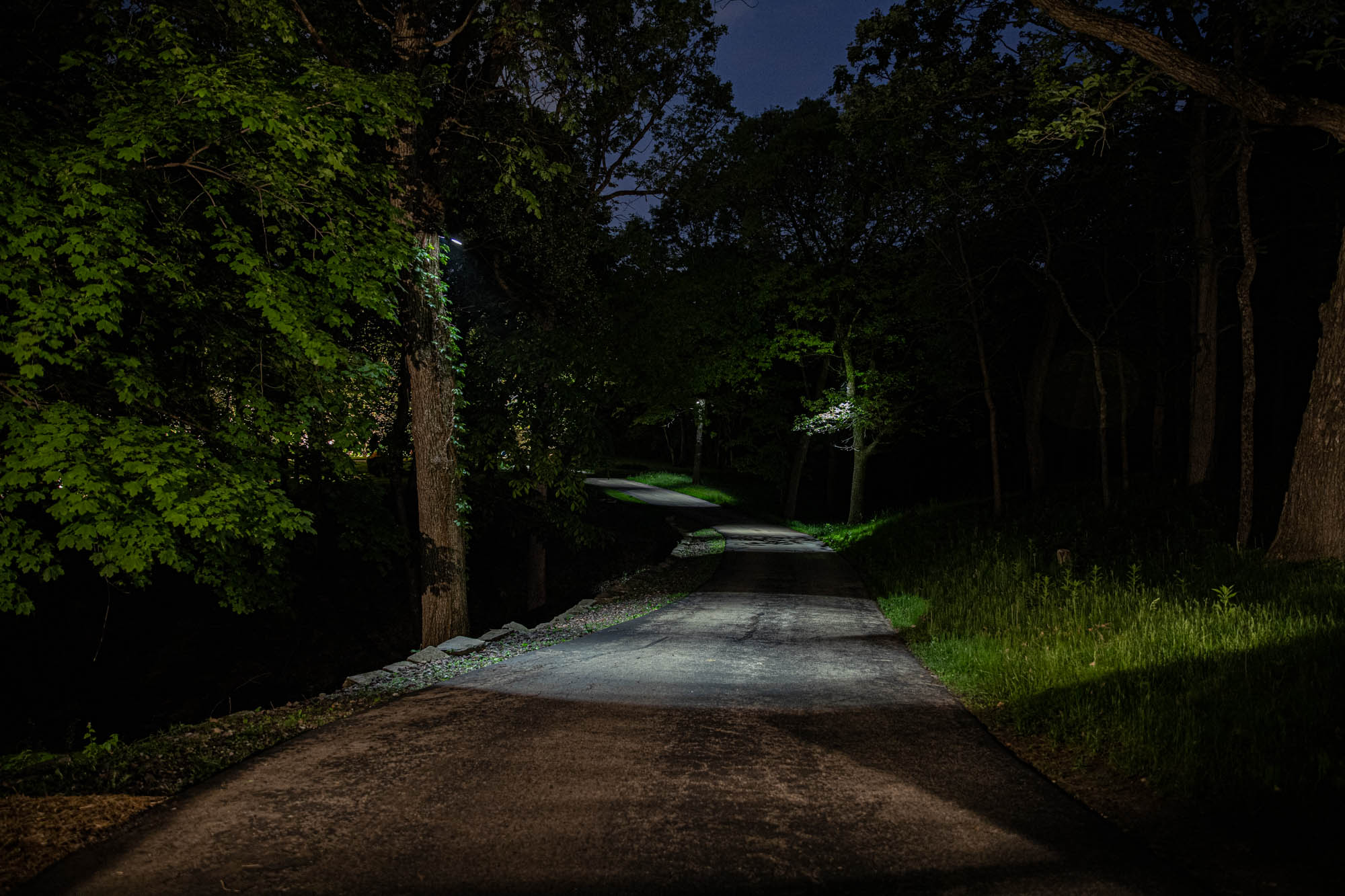 delafield landscape outdoor lighting night owl long driveway moonlighting safe security