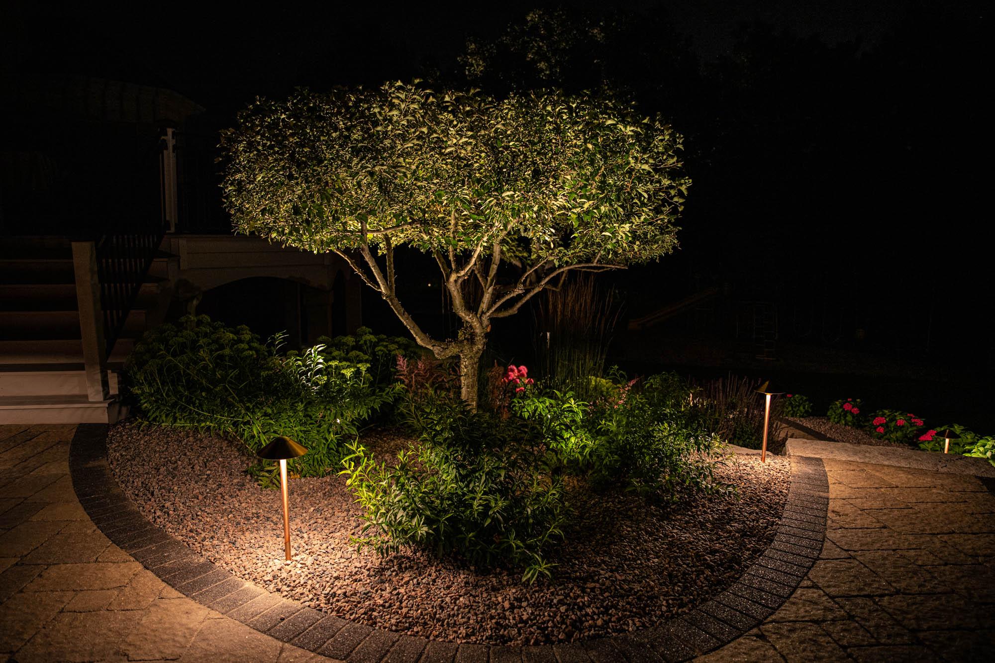 mukwonago landscape outdoor lighting night owl landscape design focal specimen tree lights
