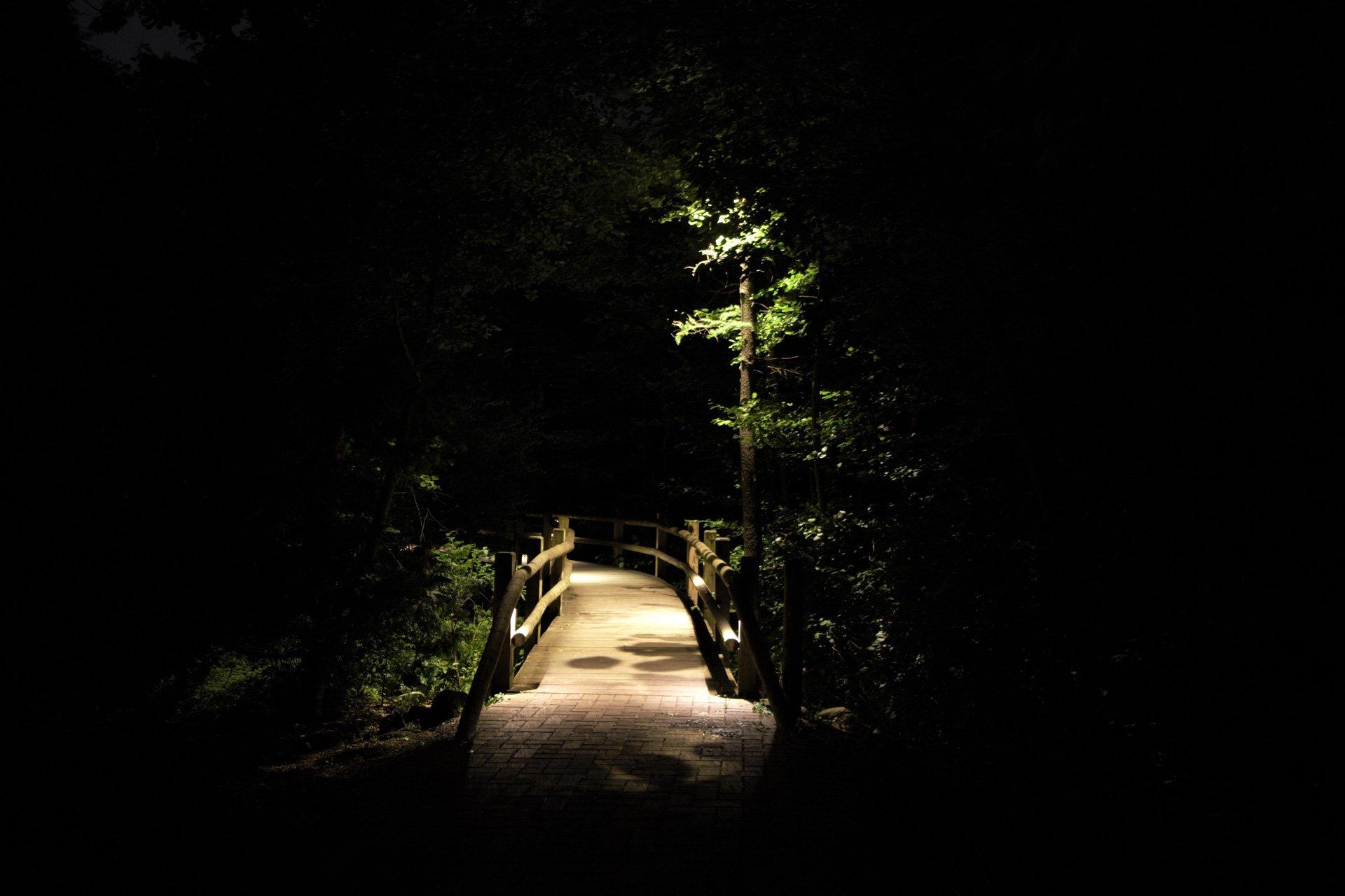 night owl landscape lighting boerner botanical gardens bridge downlight security