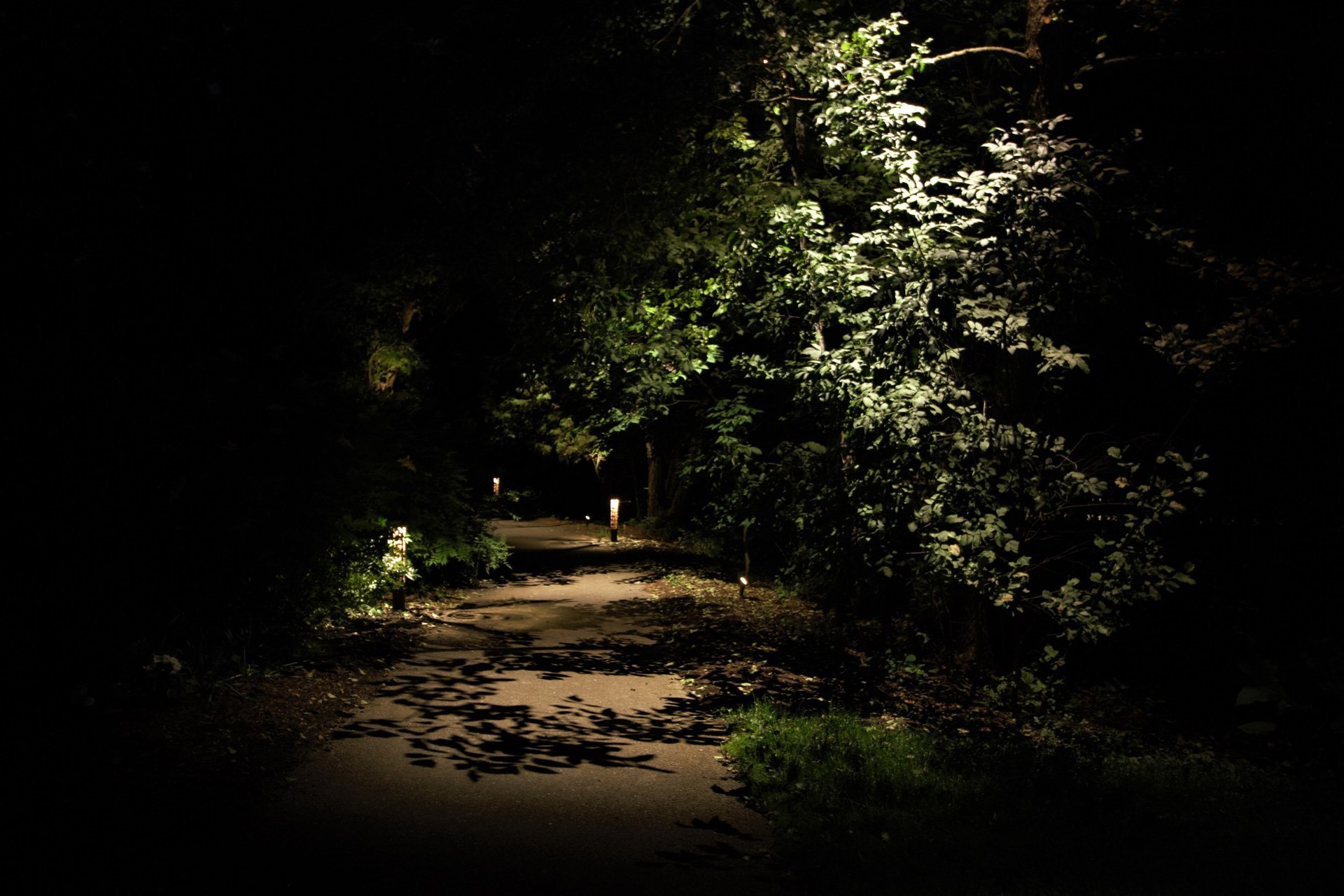 night owl landscape lighting boerner botanical gardens pathlight security foliage shadows
