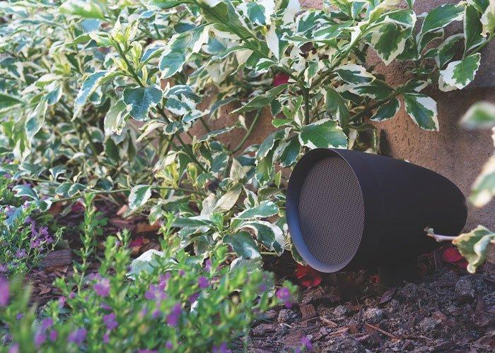 hidden landscape audio speaker next to shrubs and perennials in the landscape