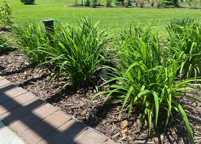 outdoor audio landscape speaker in mulch next to daylilies and brick patio